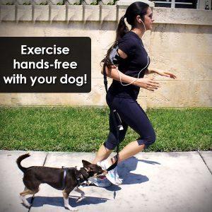 hands-free armband pet leash